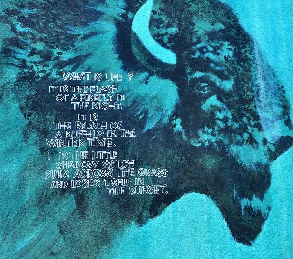 hascy-1-chief-crowfoot-of-the-canadian-blackfoot-tribe-b